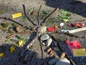 Waldpädagogik wieder gefördert